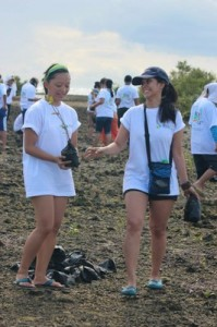 Volunteers carry mangrove seedlings for planting