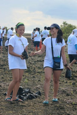Batangas Fishing Community Benefits From Mangrove Reforestation