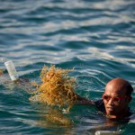 Seaweed is a valuable resource for fishermen in the Philippines