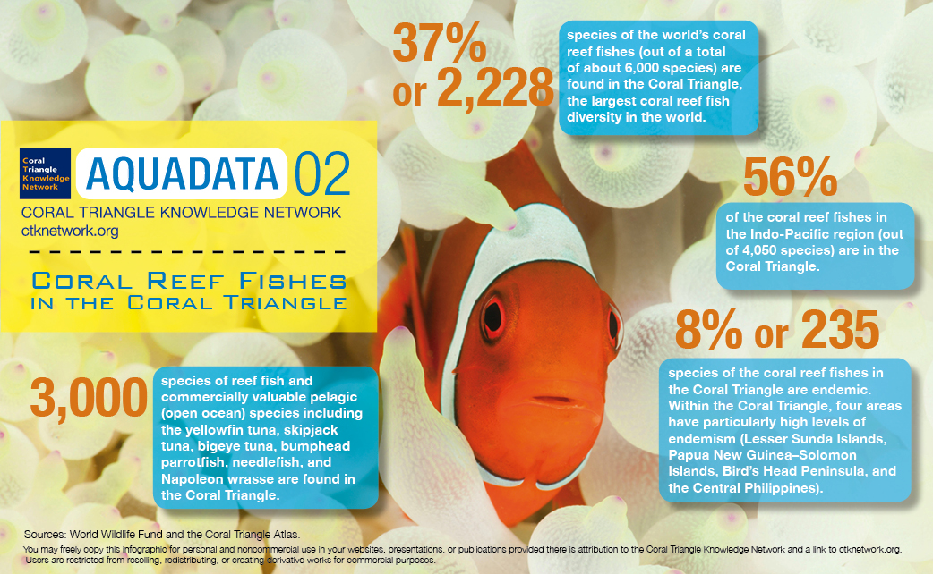 ECOFISH Aims to Protect Key Marine Areas in the Philippines