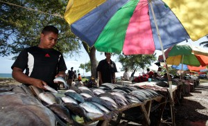 A fish market in Timor Leste. The report projects that climate change will affect food production all along the food chain of the Pacific (ADB Photo Library)