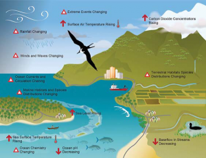 The LEAP tool contains useful data including an infographic on indicators and impacts of climate change to coastal communities (Infographic from the Coral Triangle Initiative Secretariat)