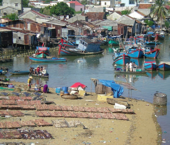 FAO Publishes Guide on Implementing Improved Tenure Governance in Fisheries