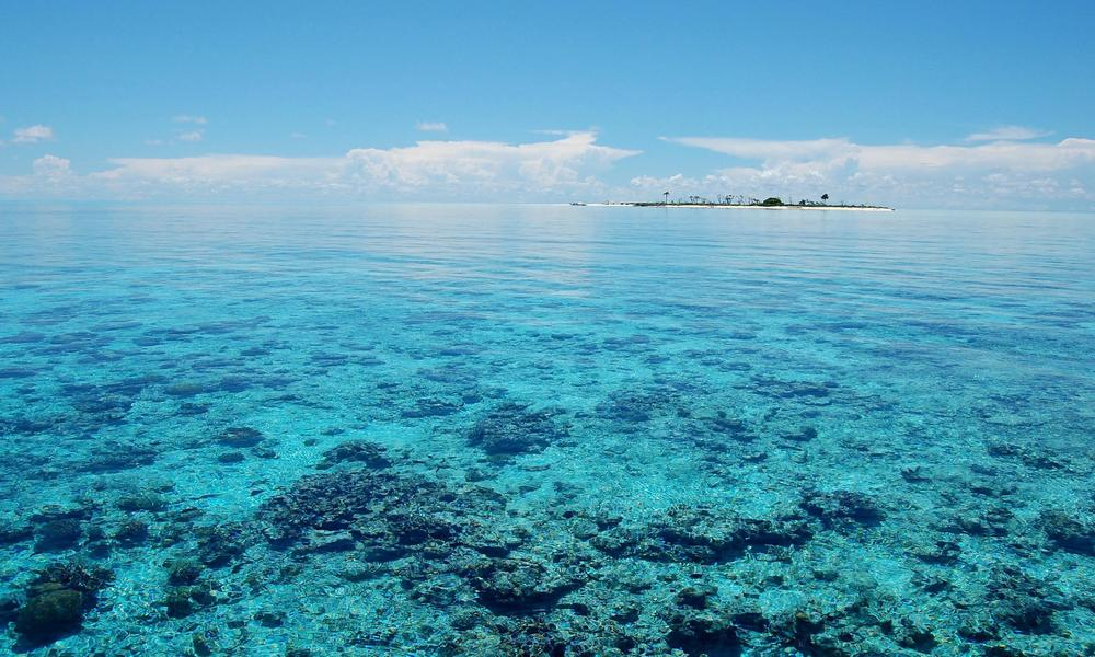 4 Flagship Sites Admitted to USAID-supported Marine Protected Area System