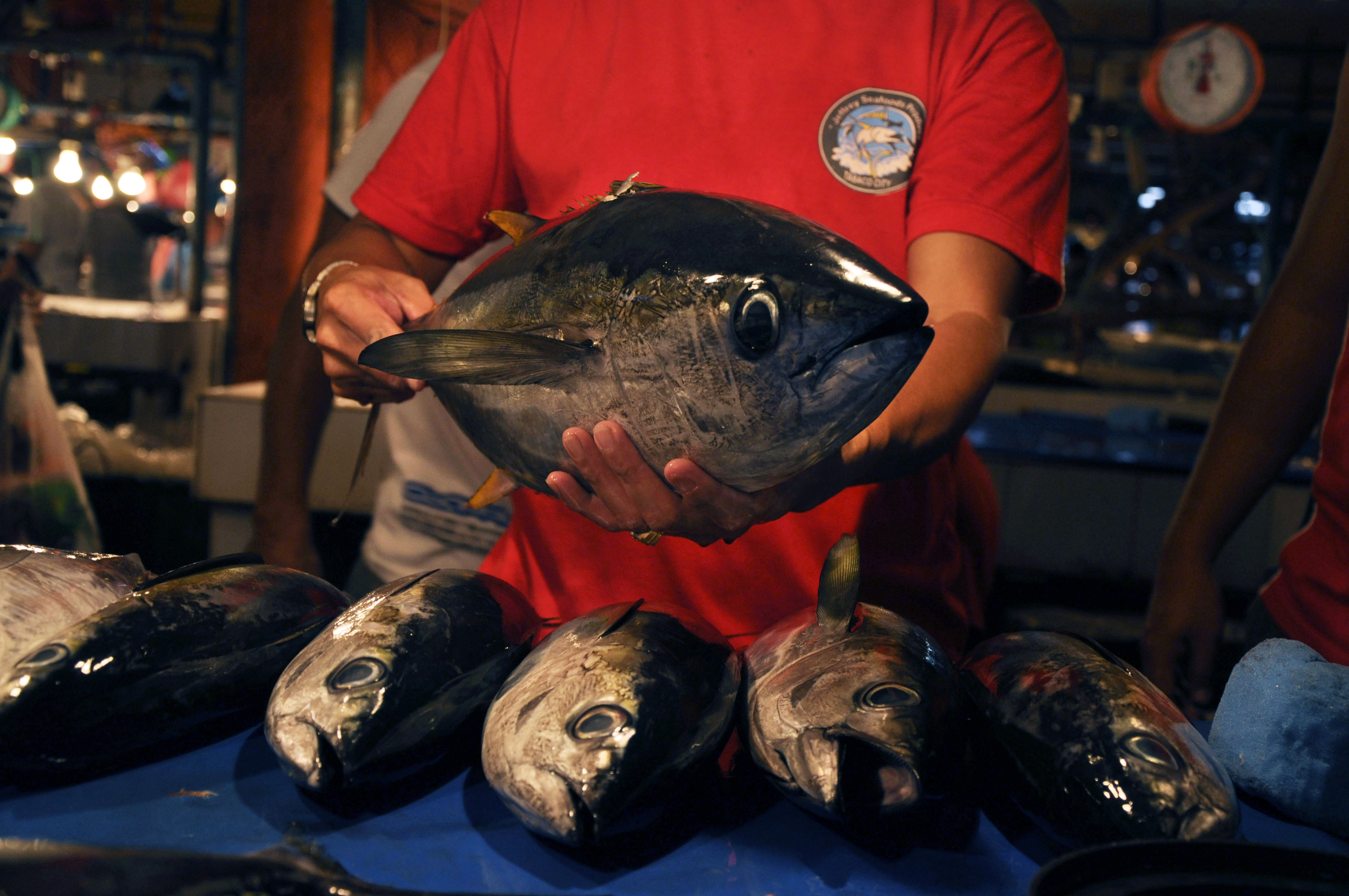Lack of Access to Tuna Data Frustrates Scientists