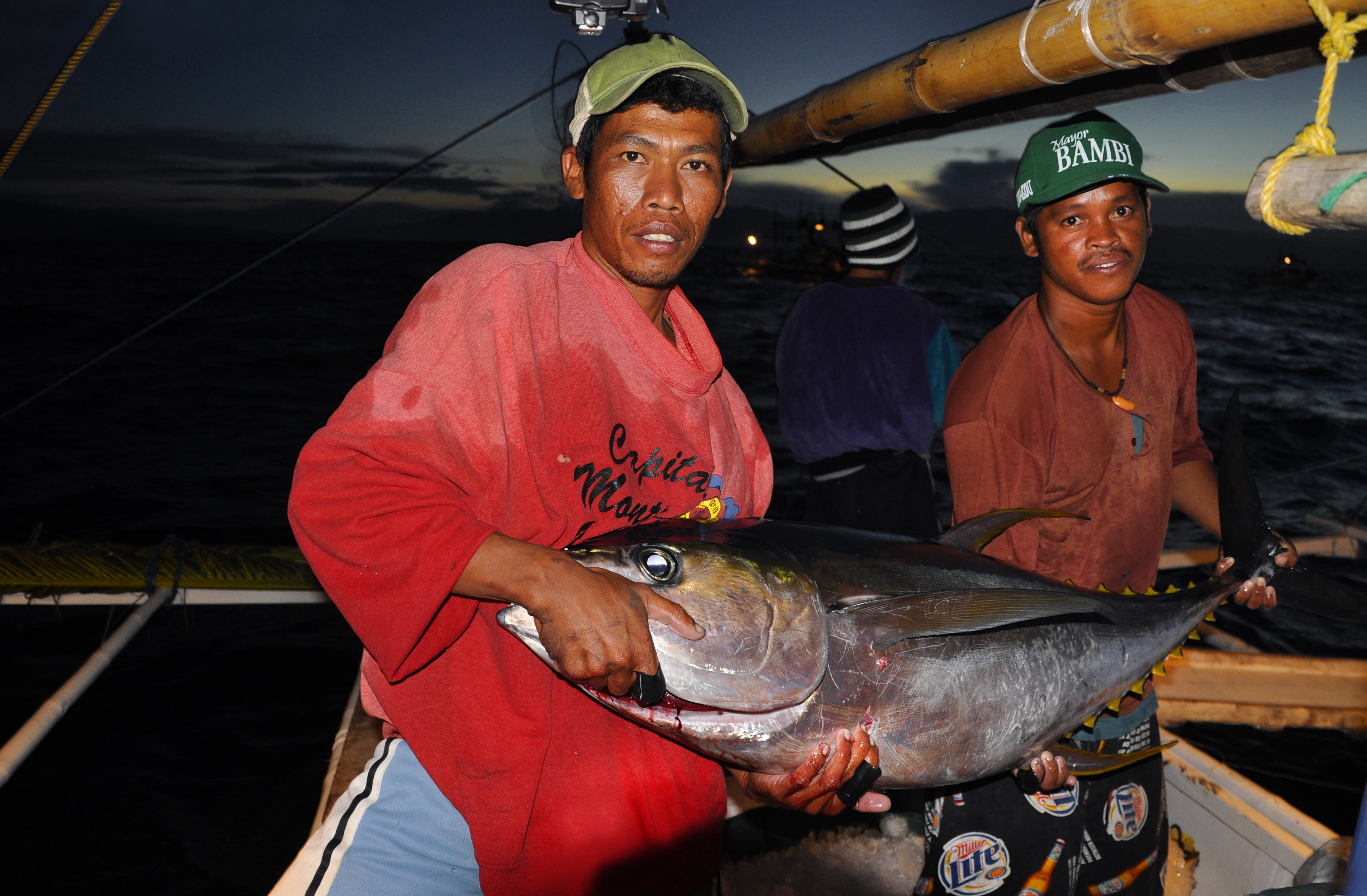 WWF's Sustainable Fishing Program Aims to Restore Fisheries Productivity in the Coral Triangle