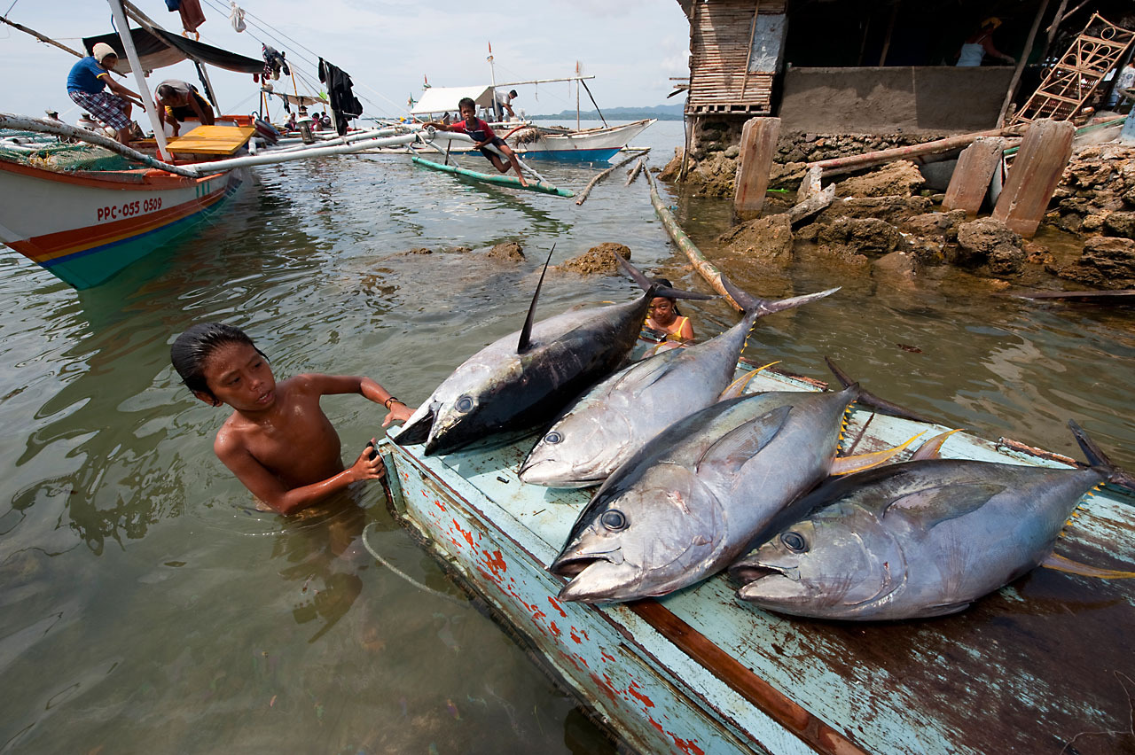 The Philippines' Seafood Future