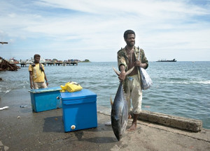 More than 60 per cent of the world's tuna is caught in the Pacific. (Photo: CTI-CFF/WWF/Tory Read)