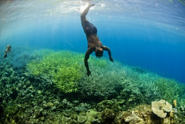 Australia Strengthens Commitment to the Coral Triangle Initiative