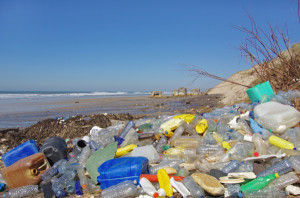 They're projecting that by 2025 the amount of plastic could reach 155 metric tons annually unless waste management techniques improve. (Photo by: Shutterstock)