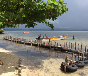 Rubber tires used for coastal protection by islanders of Andra, Manus, Papua New Guinea.  (Photo by: Marilou Drilon)
