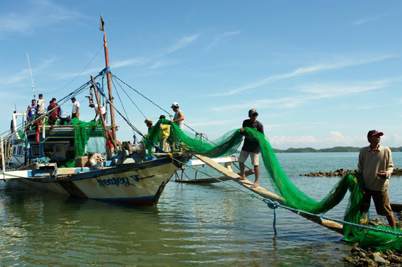 Amended Fisheries Code Sets Higher Penalties, Tightens Rules on Commercial Fishing