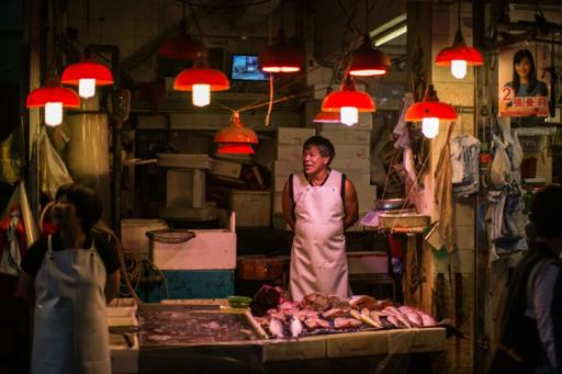 Some South China Sea Fish 'Close to Extinction'