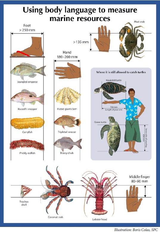 Using Body Language to Measure your Fish