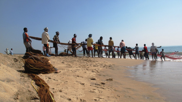Global Fisheries and Human Rights: An Opportunity for Collective Action