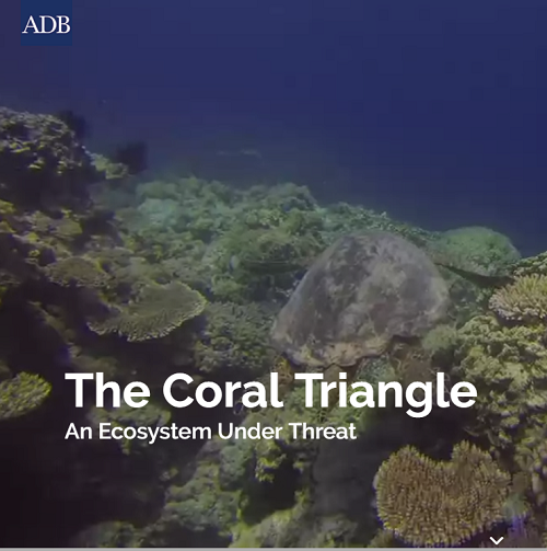 The Coral Triangle: An Ecosystem Under Threat