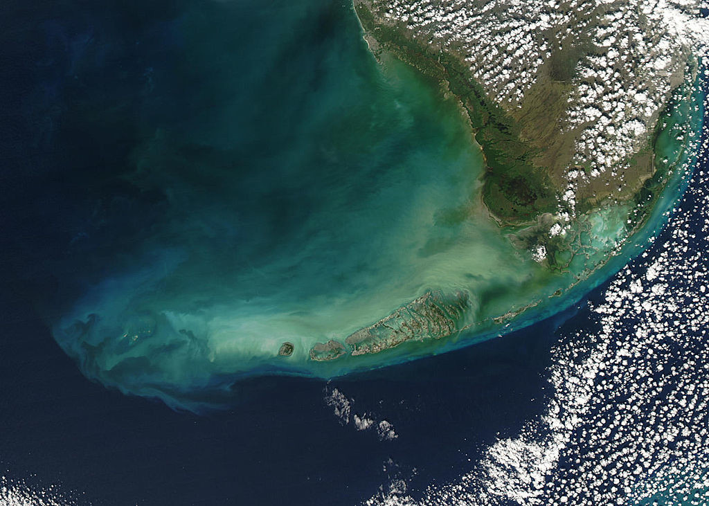 Satellite view of the Florida Keys and its coral reef tract. (Photo by: Jeff Schmaltz (MODIS Rapid Response Team, NASA/GSFC))