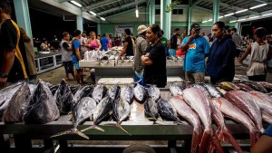 Pacific nations have not enjoyed the full economic benefits of their fishing resources.