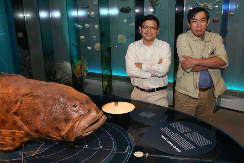 New $25m Programme for Marine Science Research and Development in Singapore