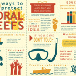 coral infographic