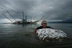 A Filipino fisherman wades from boat to shore with part of the crew's catch. Fishermen who go to the South China Sea report that their catches have gotten smaller in recent years. (Photo by: Adam Dean, National Geographic)