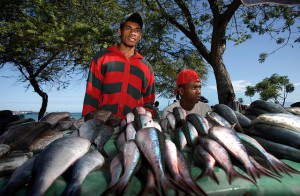 Vendors selling fish in Dili, Timor-Leste. (Photo from: ADB Photo Library.)
