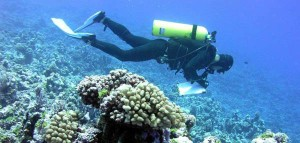 The 2016 coral reef grants and cooperative agreements issued by the NOAA Coral Reef Conservation Program include work to monitor the condition of reefs, promote reef resilience in the face of a changing climate, and enhance sustainable fisheries. (Photo from: NOAA)