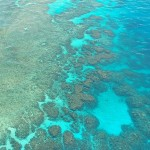 Australia's Great Barrier Reef. (Photo from: Pixabay.)